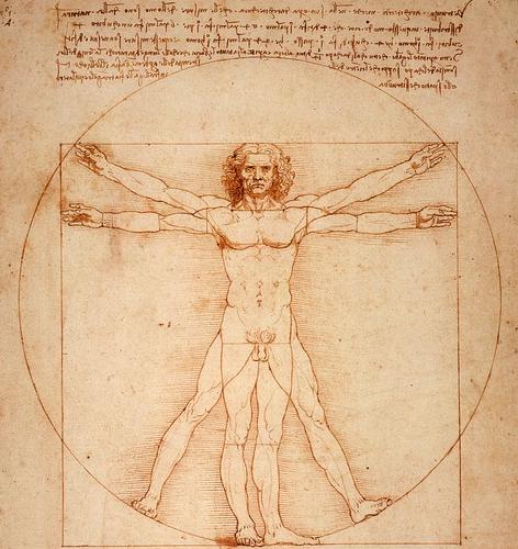 Virtuvian Man